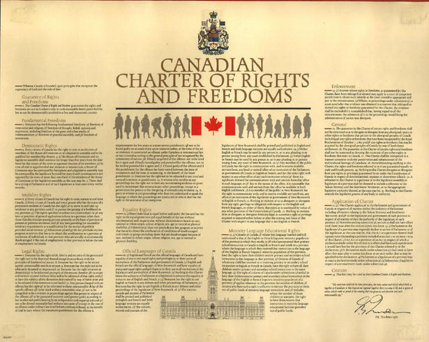 charter of rights, Milot Law, Tax Lawyer